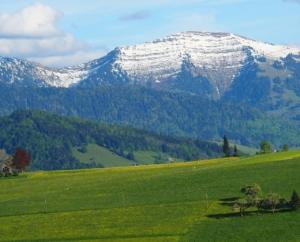 Alpen-Schmankerl PARTYSERVICE & CATERING - inmitten der Allgäuer Berge